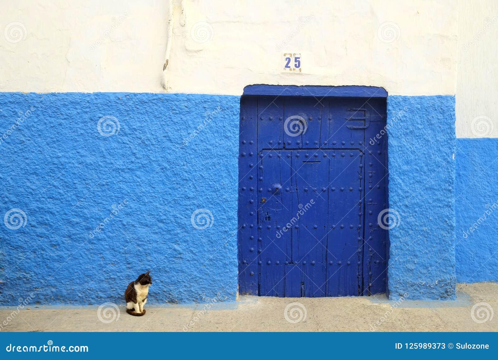 d0669bc8dc7 Rabat, Marocco Marzo 17,2014: Un gatto in bianco e nero che si siede dalla  porta blu con la parete blu e bianca