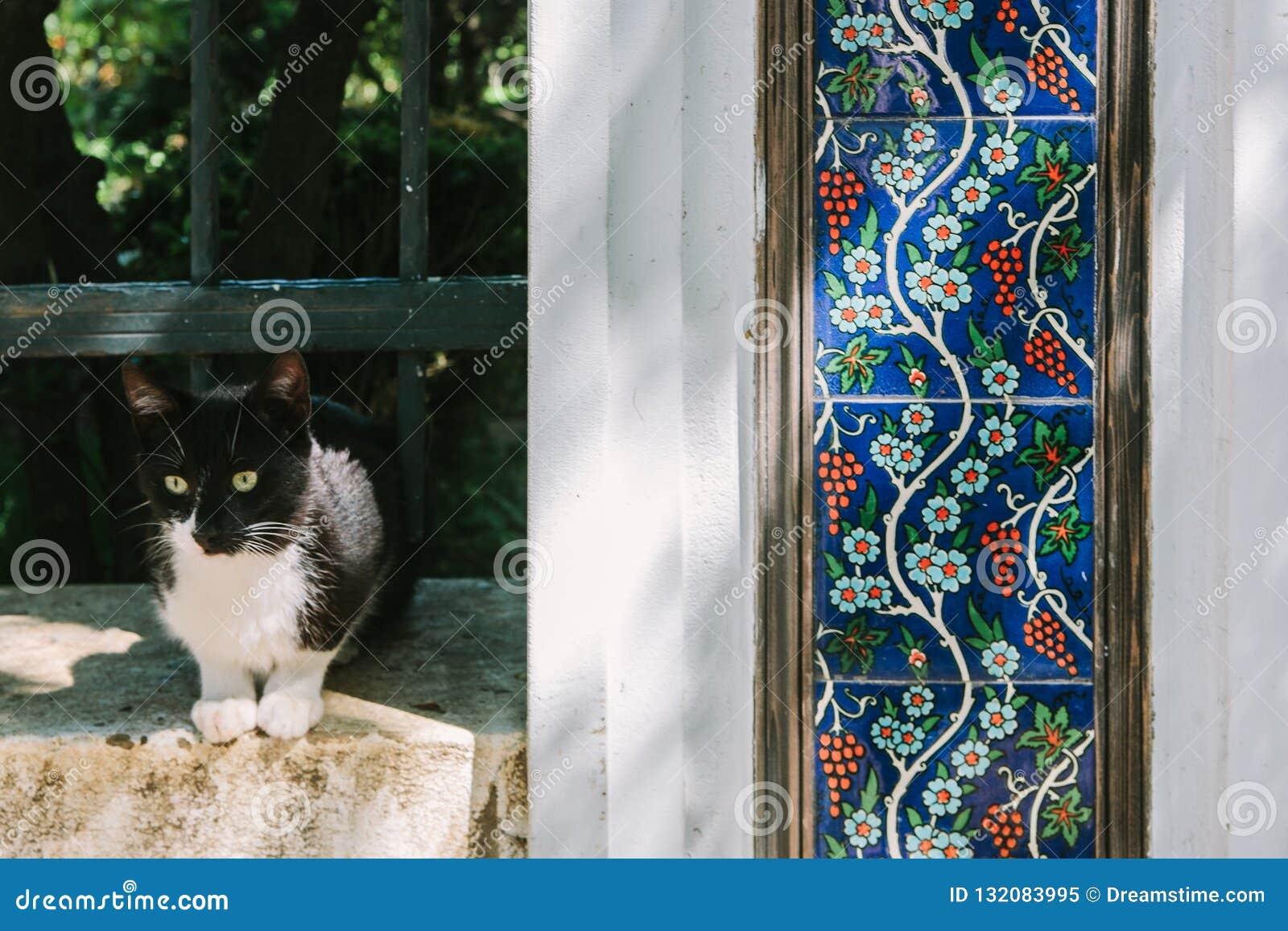 Un gatto bianco nero con le piastrelle di ceramica decorative con
