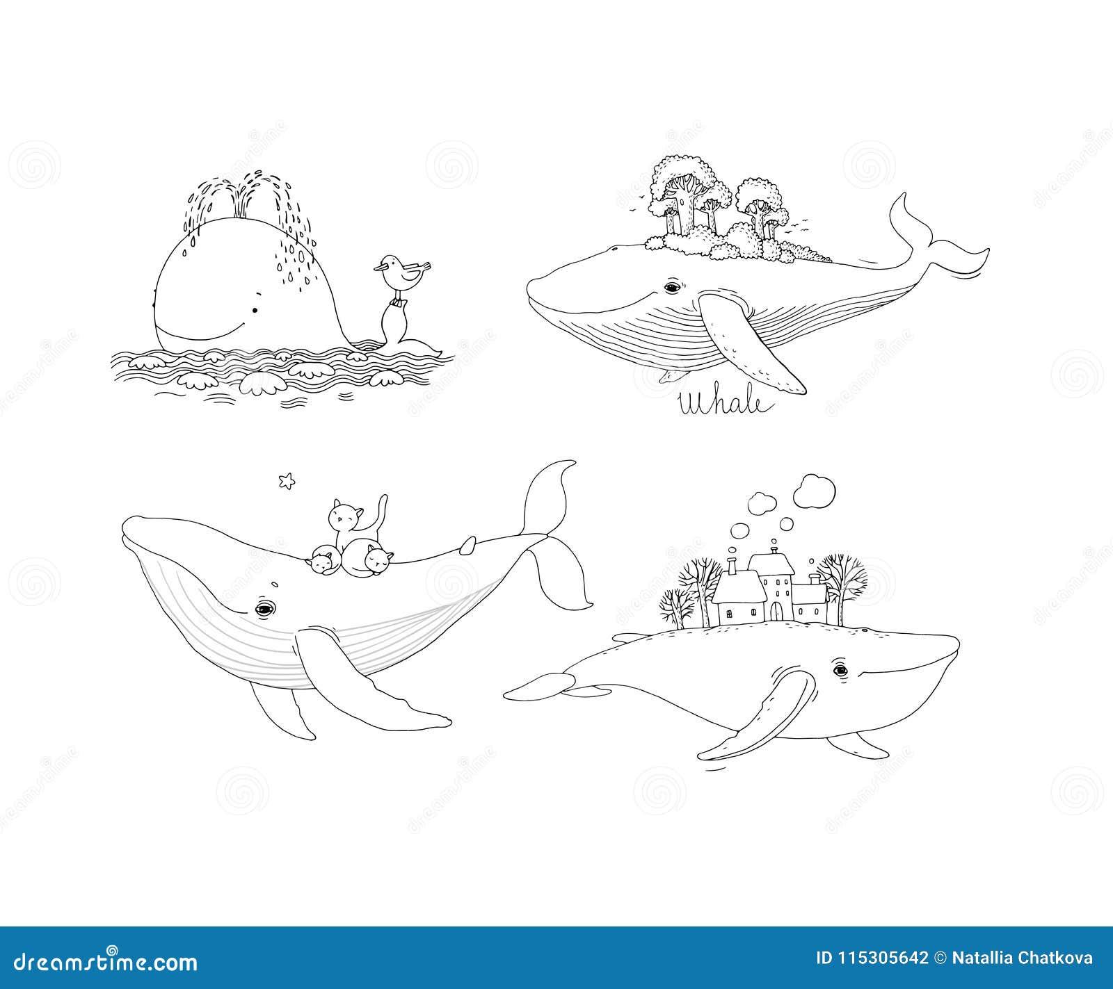 Un grand ensemble avec des baleines