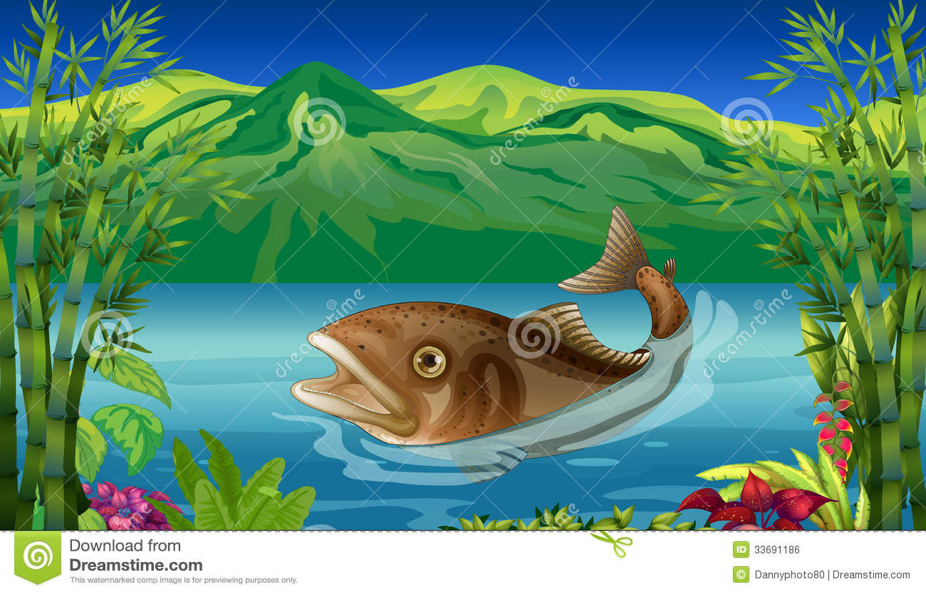 Un grand poisson en mer image libre de droits image 33691186 - Grand poisson de mer ...