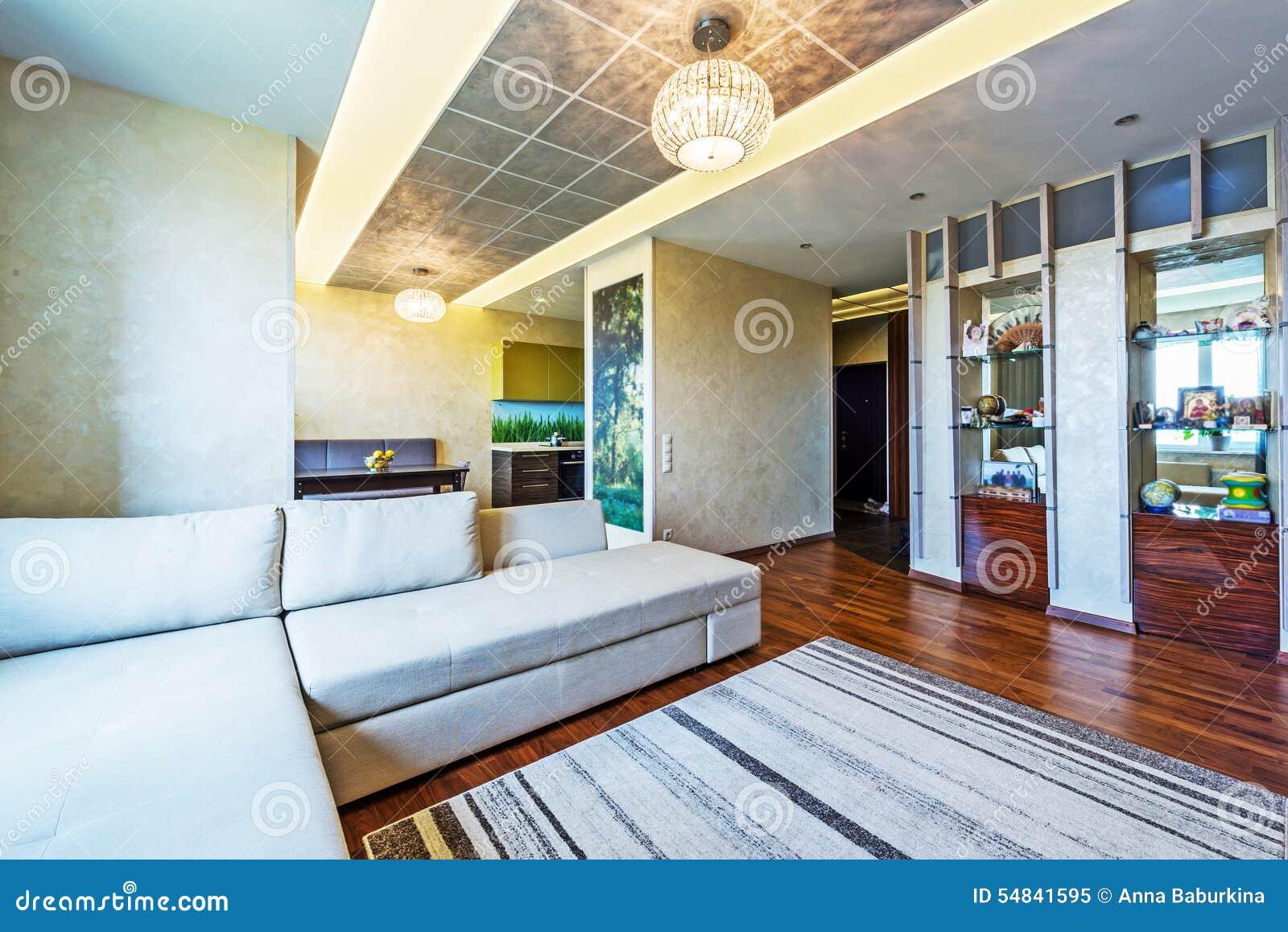 Un grand salon moderne image stock. Image du gris, meubles - 54841595