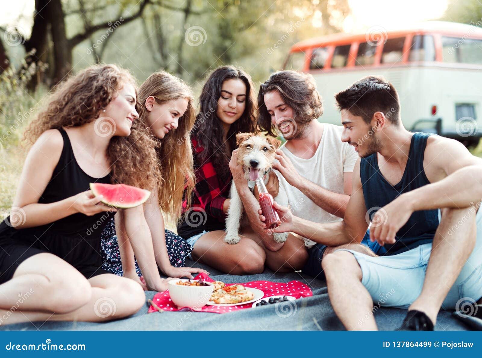 Un grupo de amigos con un perro que se sienta en la tierra en un roadtrip a través de campo