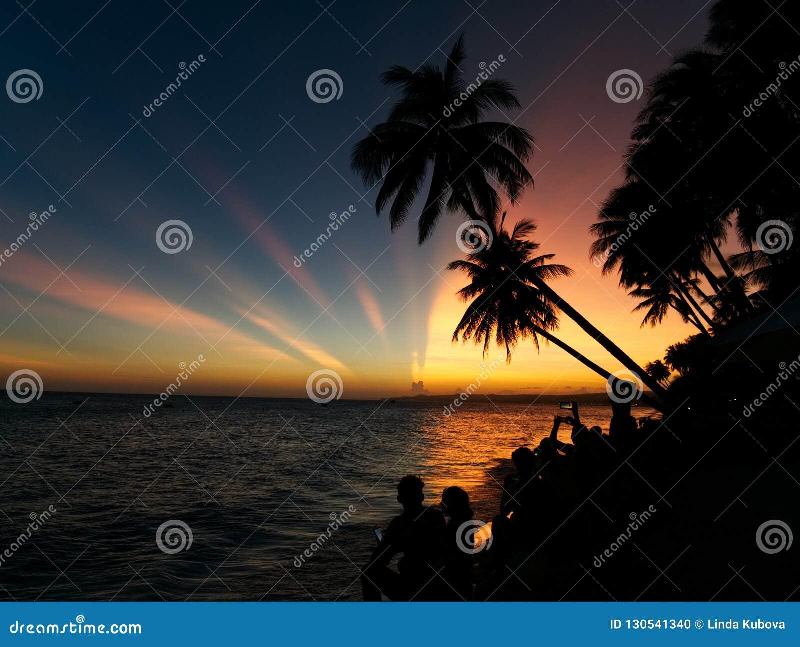 Un grupo de personas que mira la puesta del sol con las palmeras