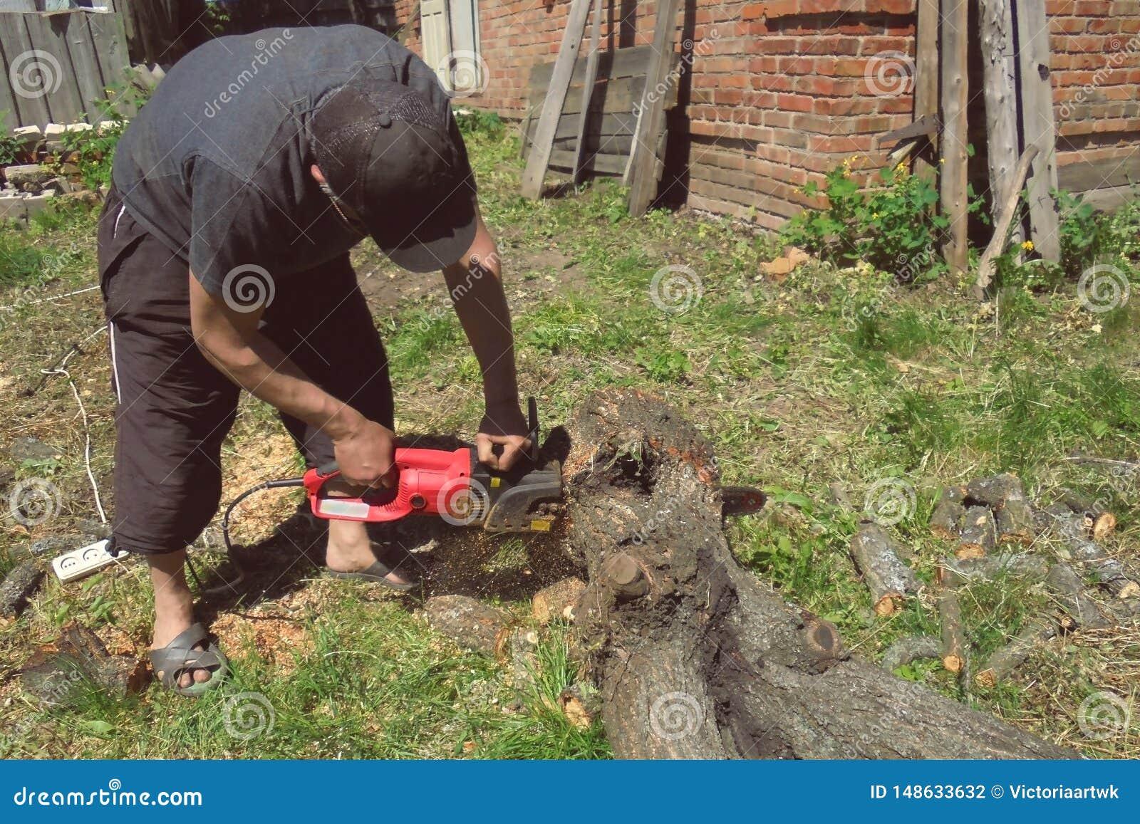 Un hombre está aserrando un árbol con una sierra eléctrica en la yarda