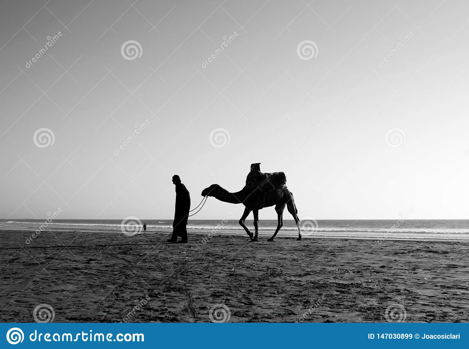 Un homme et un chameau