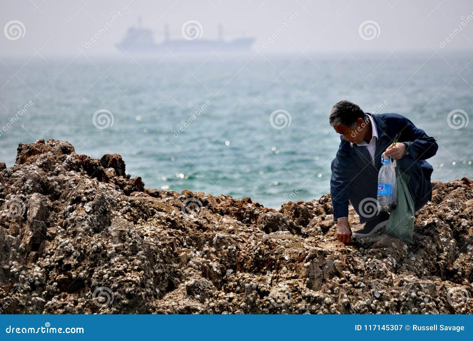 Un homme plus âgé forageant, Qingdao, Chine