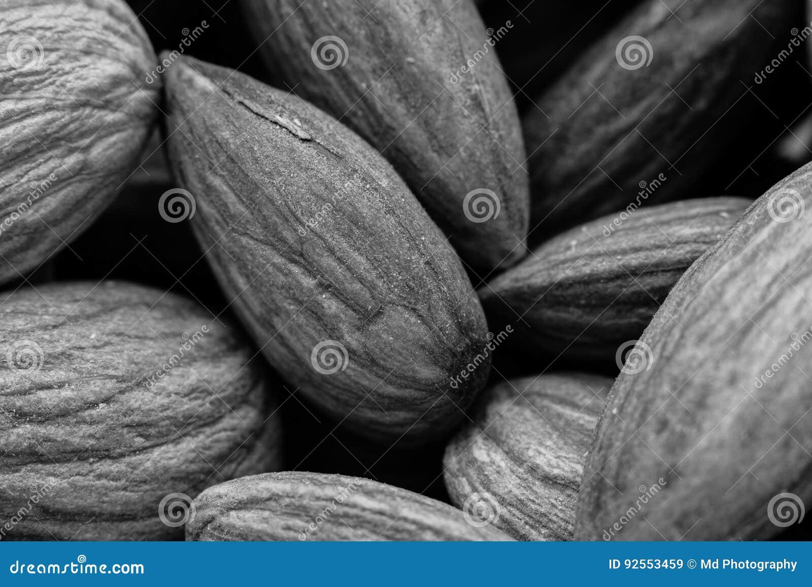 Un immagine in bianco e nero di struttura del fondo dei semi di girasole