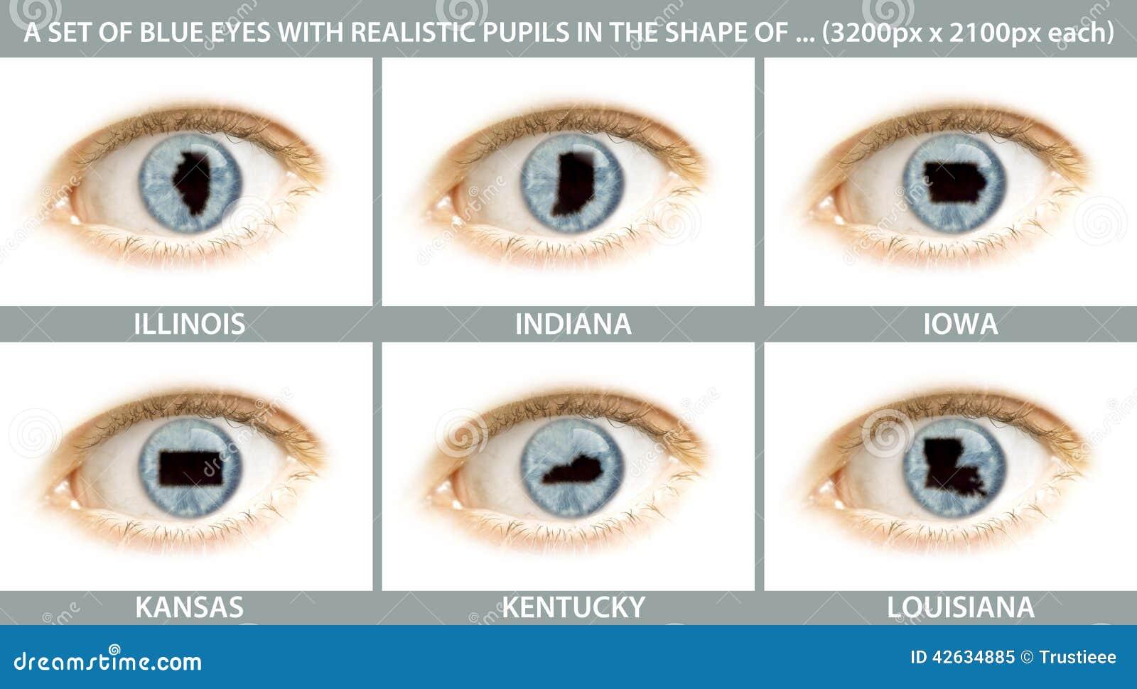 Un insieme dei primi piani di un occhio con la pupilla for Piani di fattoria di un livello