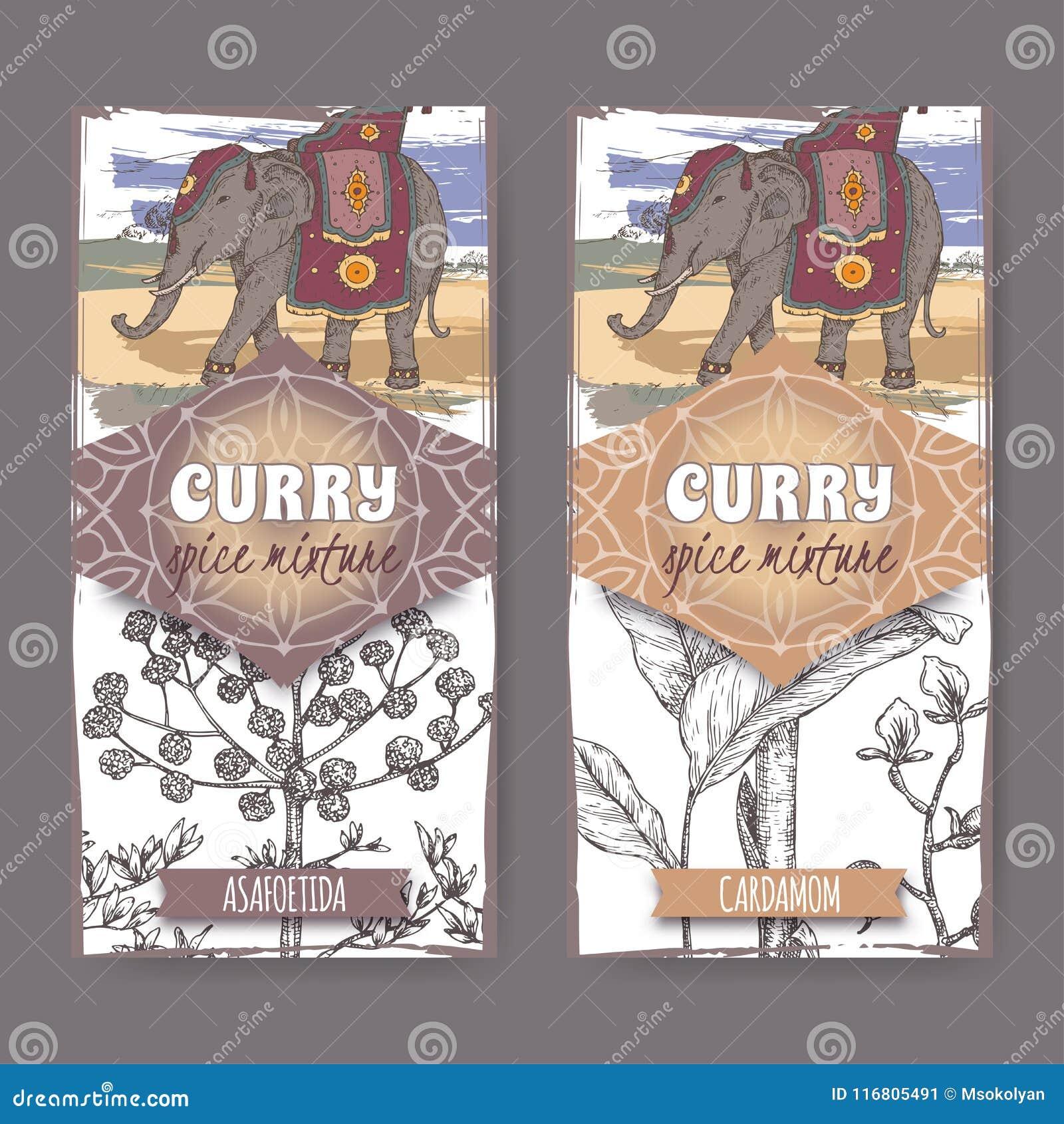 Un insieme di due etichette con assafetida, schizzo disegnato a mano di colore dell elefante indiano e del cardamomo