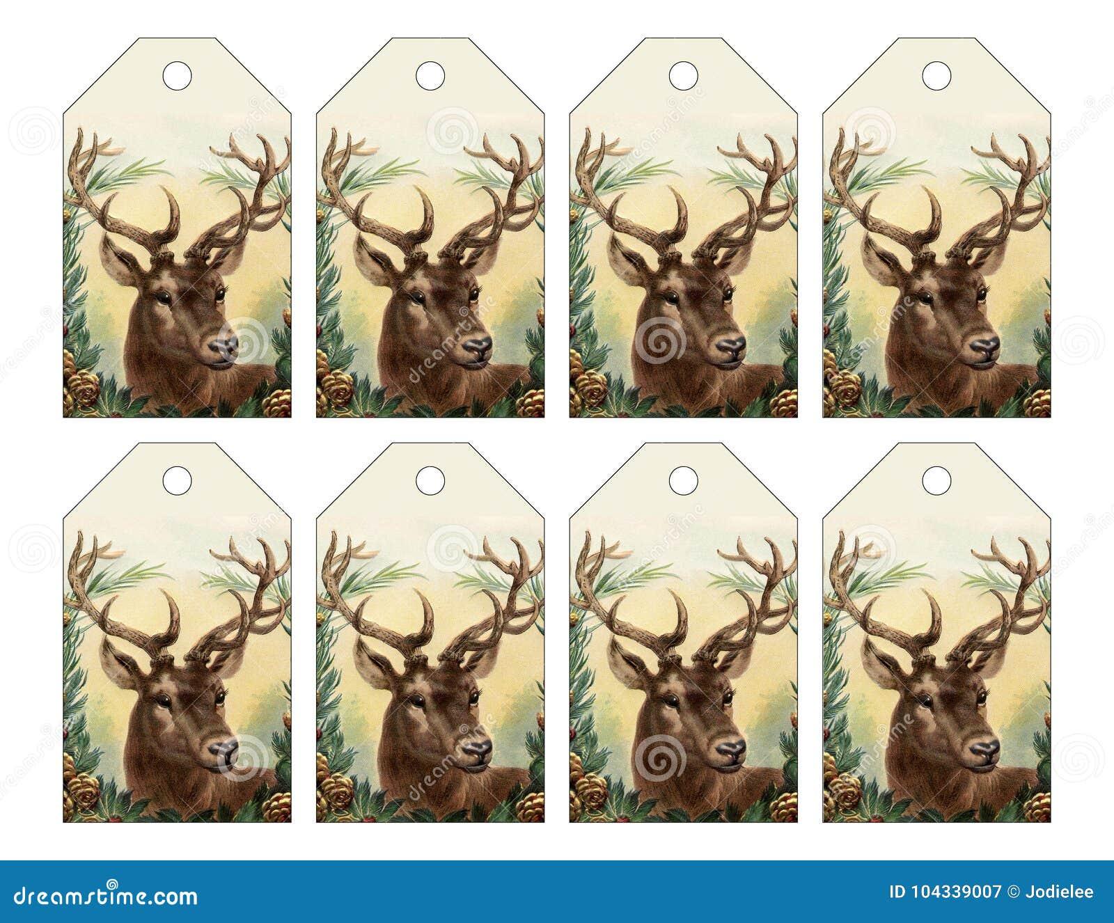 Un insieme di 8 etichette della renna per il Natale o l inverno