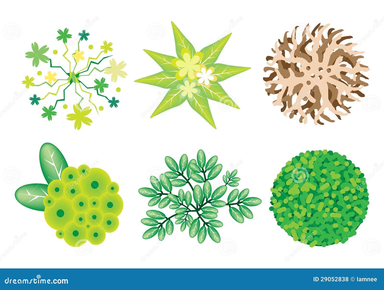 Immagini Di Piante E Alberi un insieme isometrico degli alberi e delle piante
