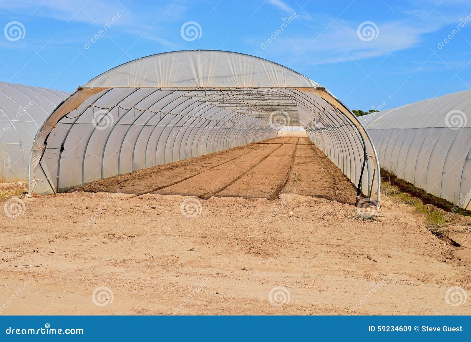 Download Un Invernadero Del Polietileno Imagen de archivo - Imagen de descubierto, fila: 59234609