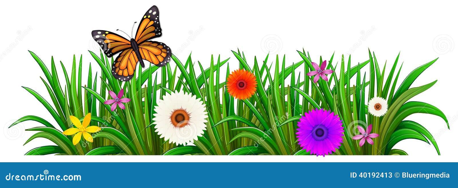 Un Jardín Con Flores Florecientes Y Una Mariposa