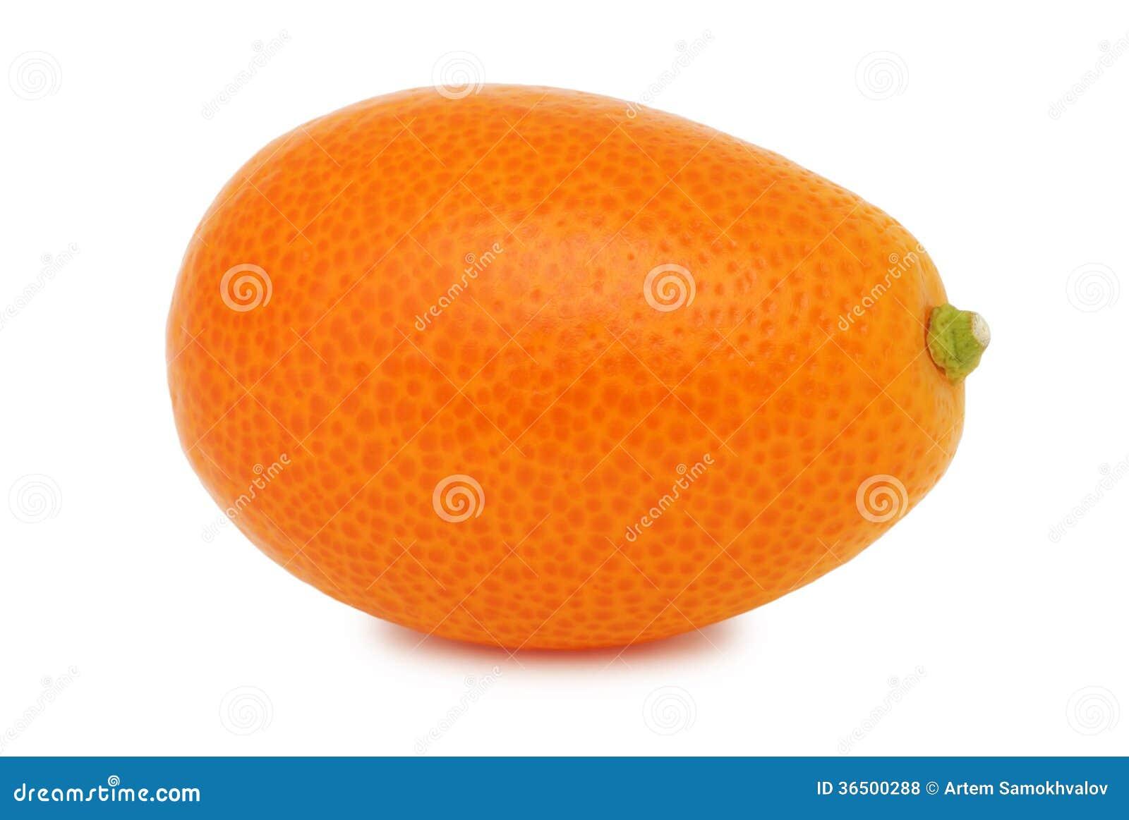 Un kumquat entier (d isolement)
