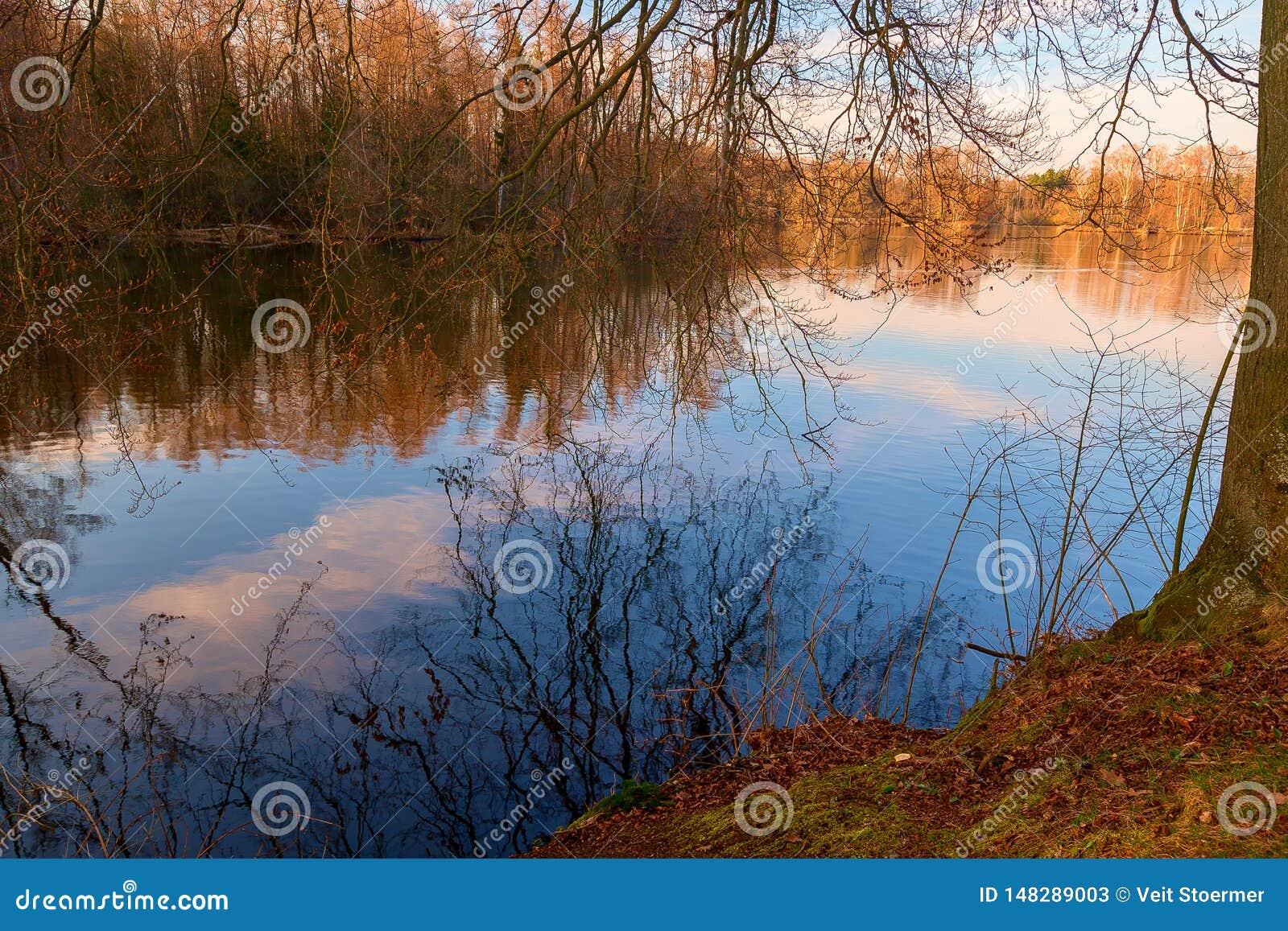 Un lac dans la for?t