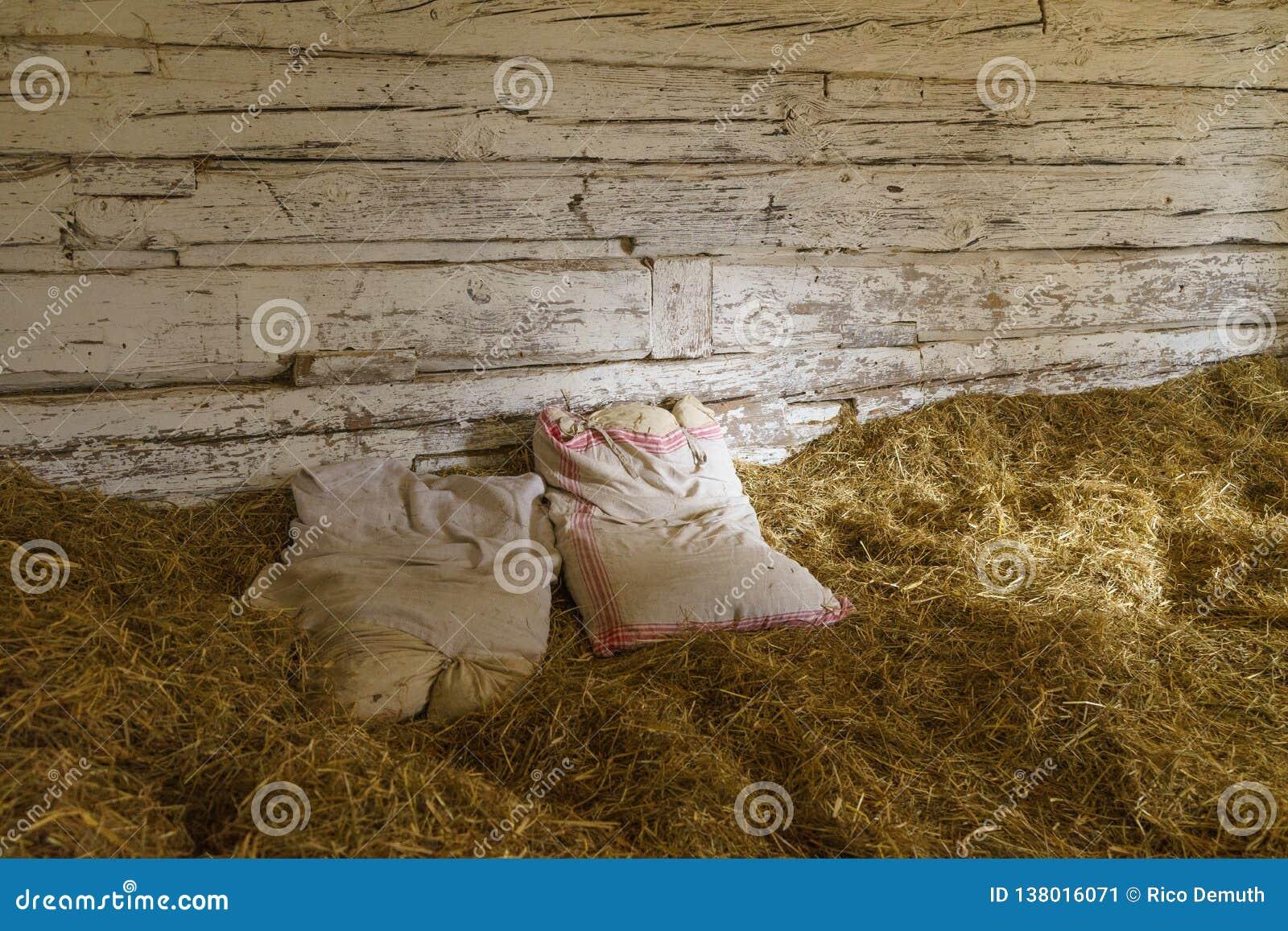 Un letto nel fieno