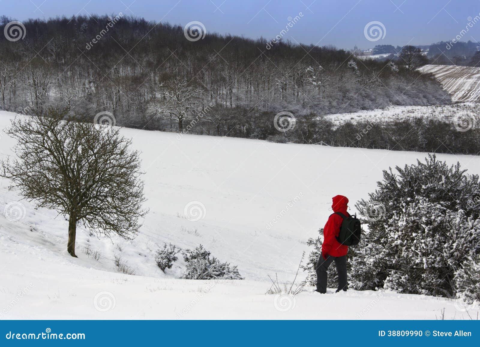 un marcheur sur une neige a couvert le flanc de coteau. Black Bedroom Furniture Sets. Home Design Ideas