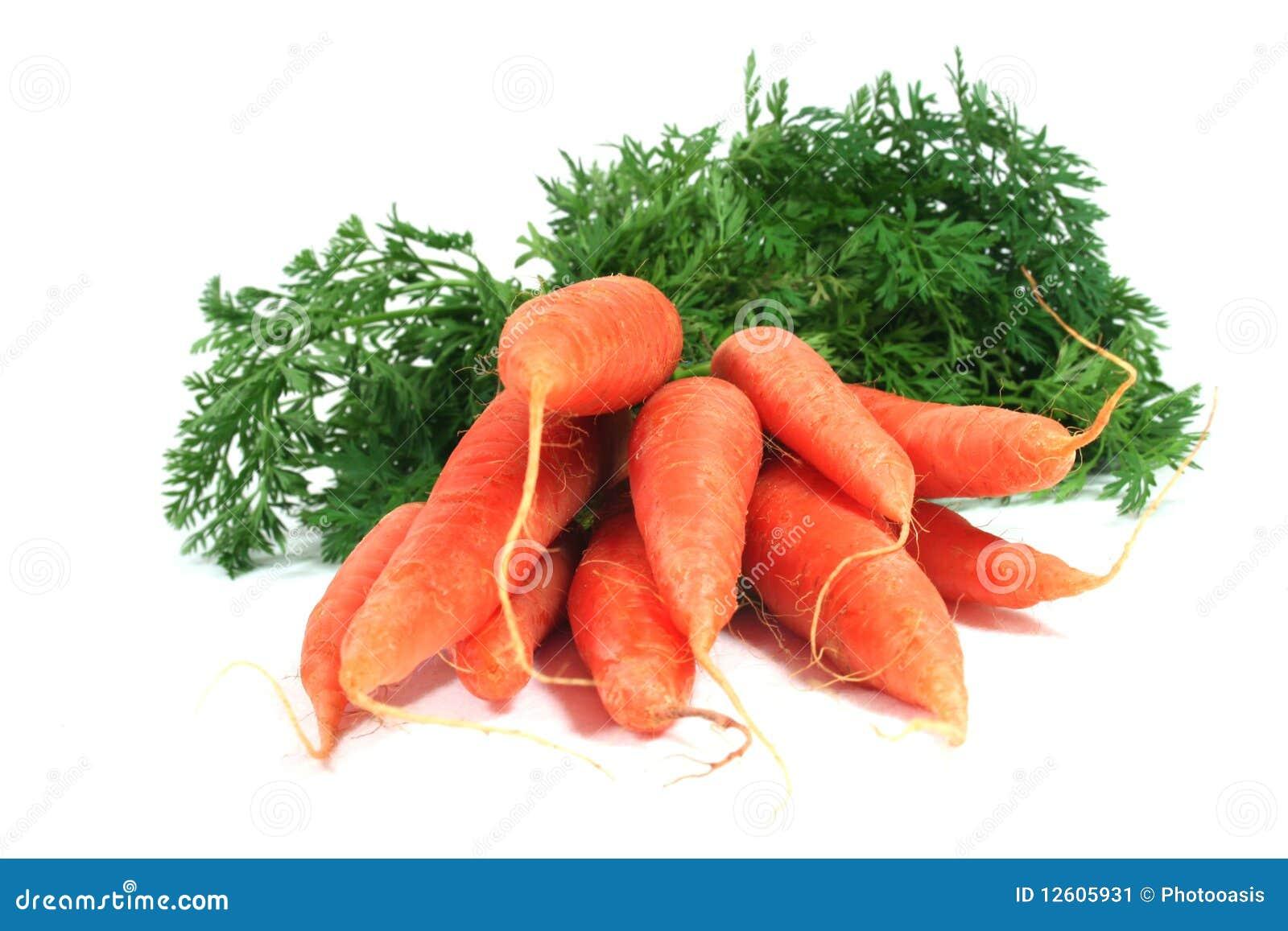 Un mazzo di carote immagine stock immagine di verdure for Costruire un mazzo di portico