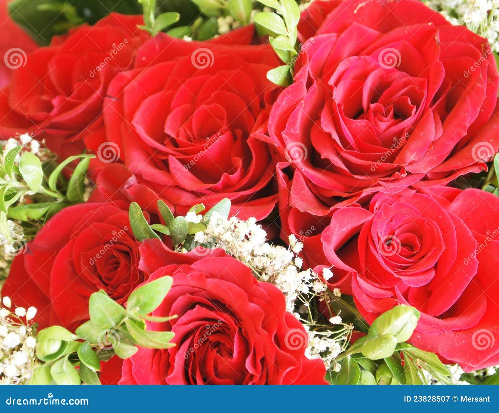 Un mazzo di rose fotografia stock libera da diritti for Costruire un mazzo di portico