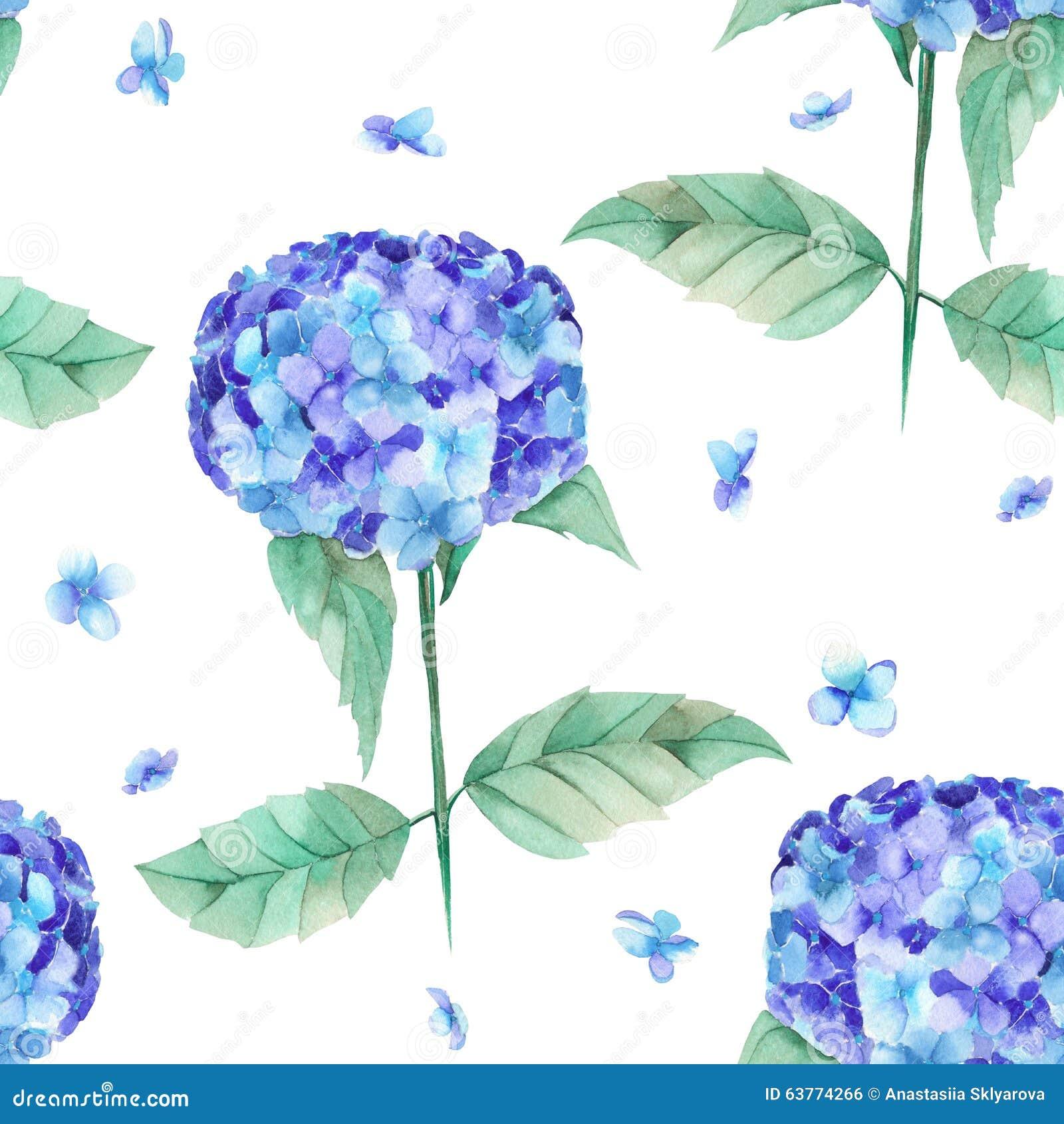 Un modello senza cuciture dell 39 ortensia blu del bello - Ortensia blu ...