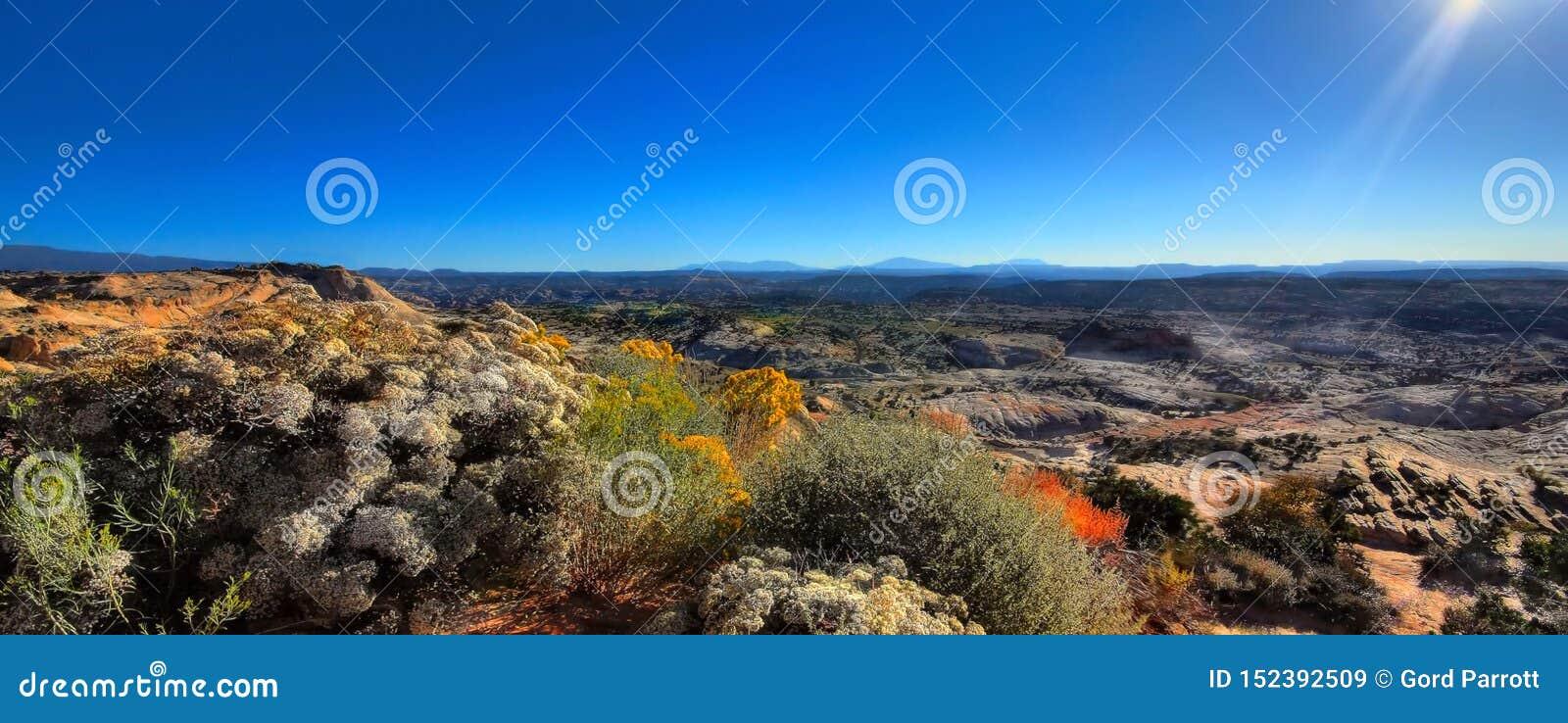 Un panorama de désert du Wyoming