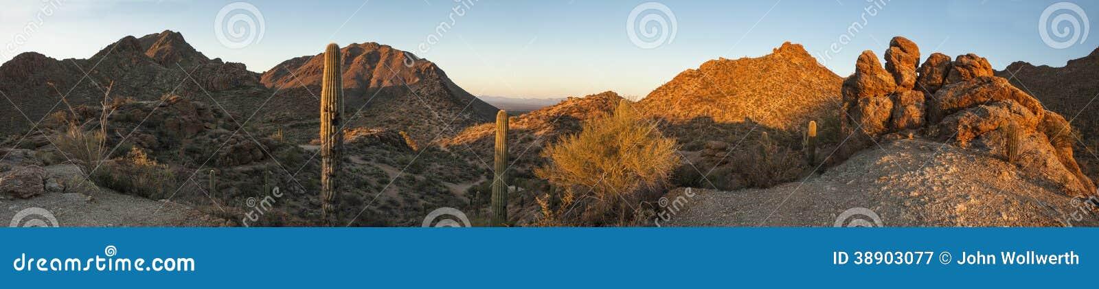 Un panorama di 180 gradi del deserto di sonoran
