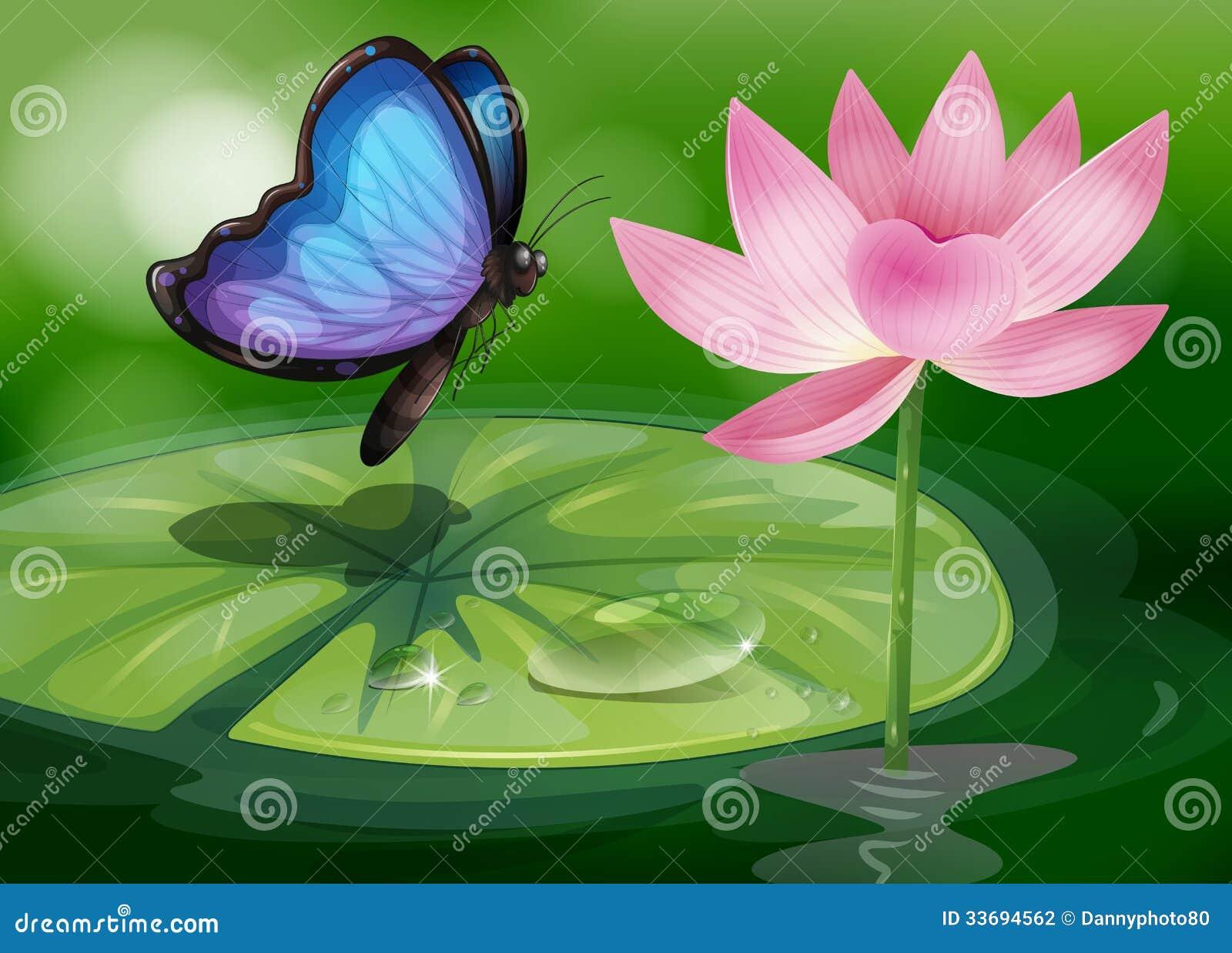 un papillon prs de la fleur rose l tang