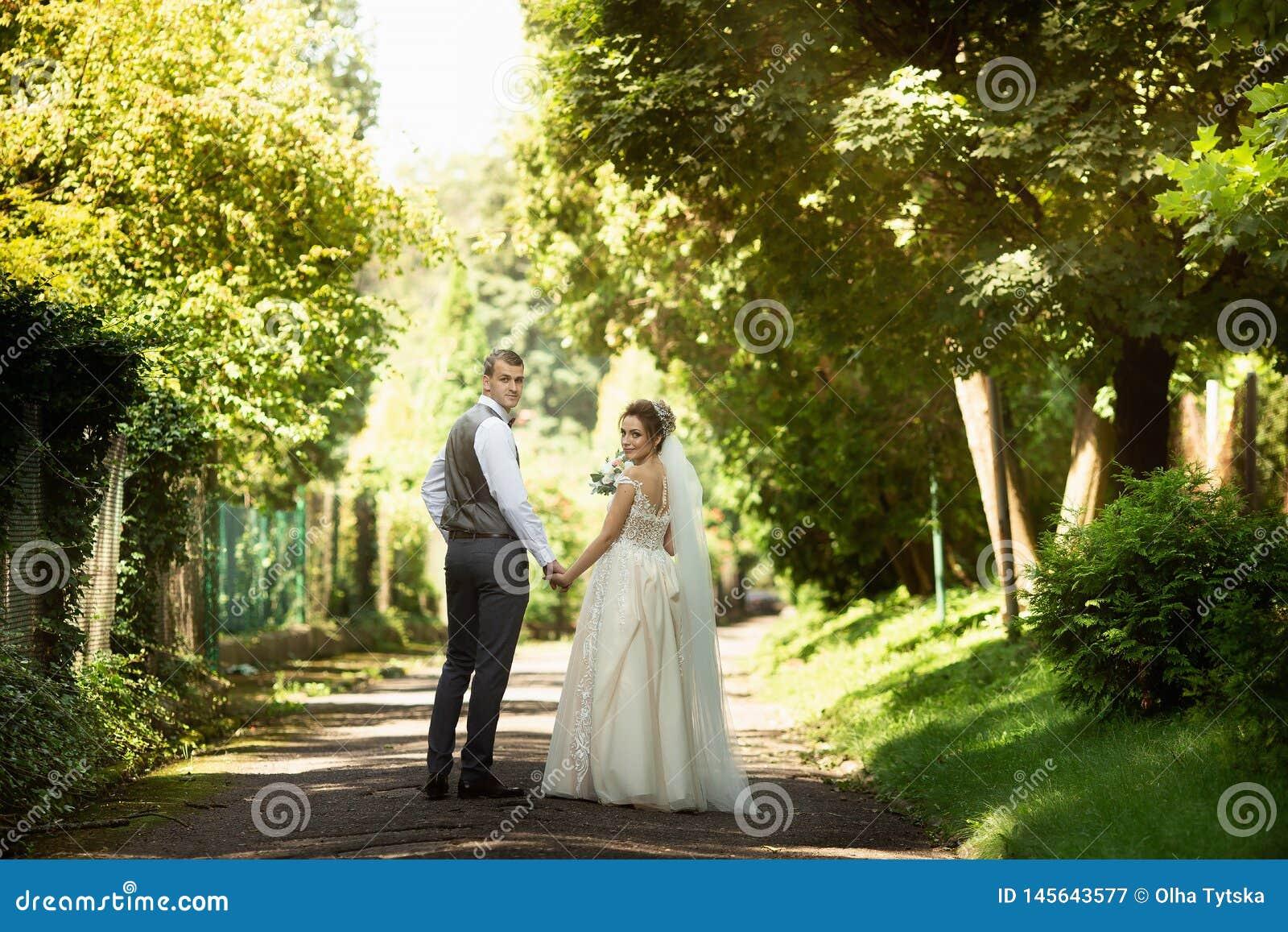 Un par que se casa que camina en el parque soleado Manos del control de los recienes casados Visi?n posterior