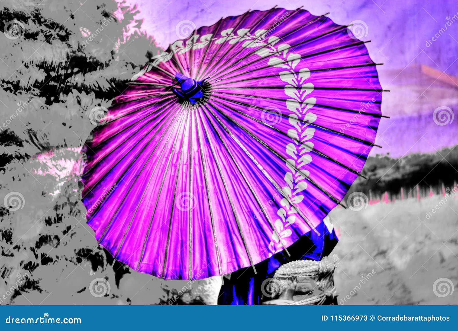 Un paraguas del color púrpura