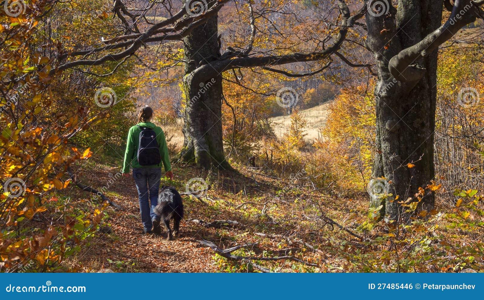 Un paseo con un amigo