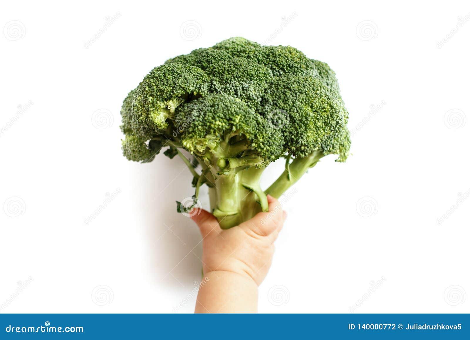 Un pequeño niño sostiene el bróculi en su mano, él está para una dieta sana