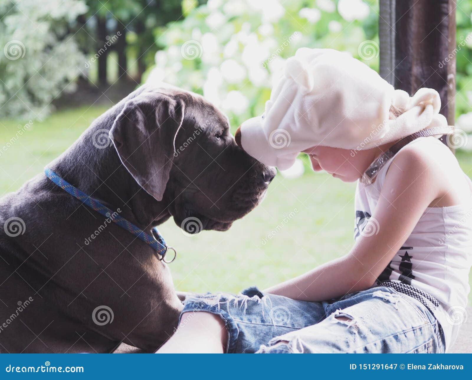 Un perro grande y un niño en un sombrero divertido