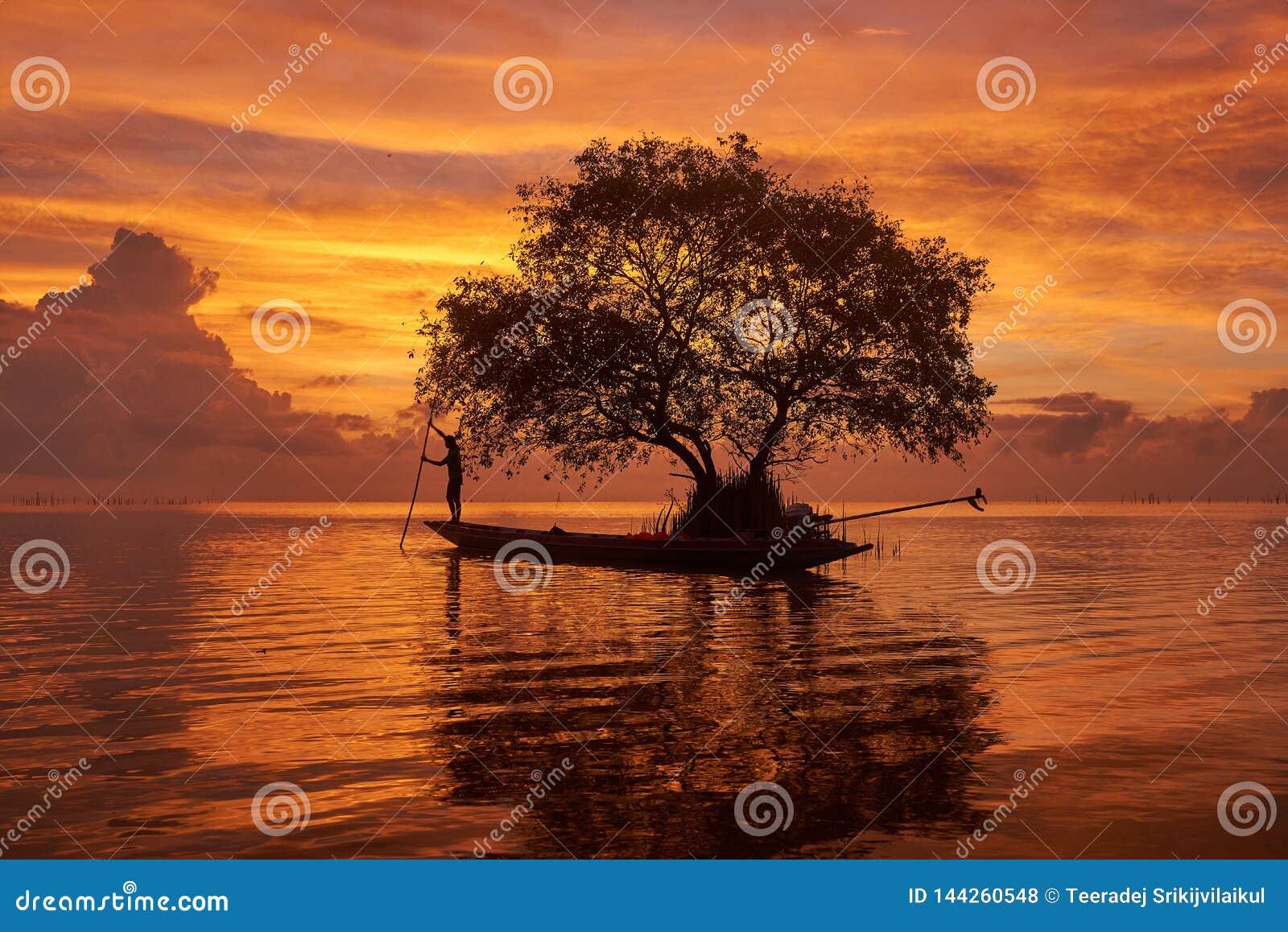 Un pescador en el barco del longtail y un fondo hermoso del cielo del agianst del árbol de corcho