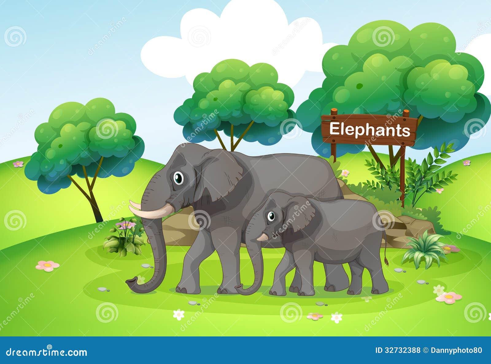 Un petit et grand éléphant