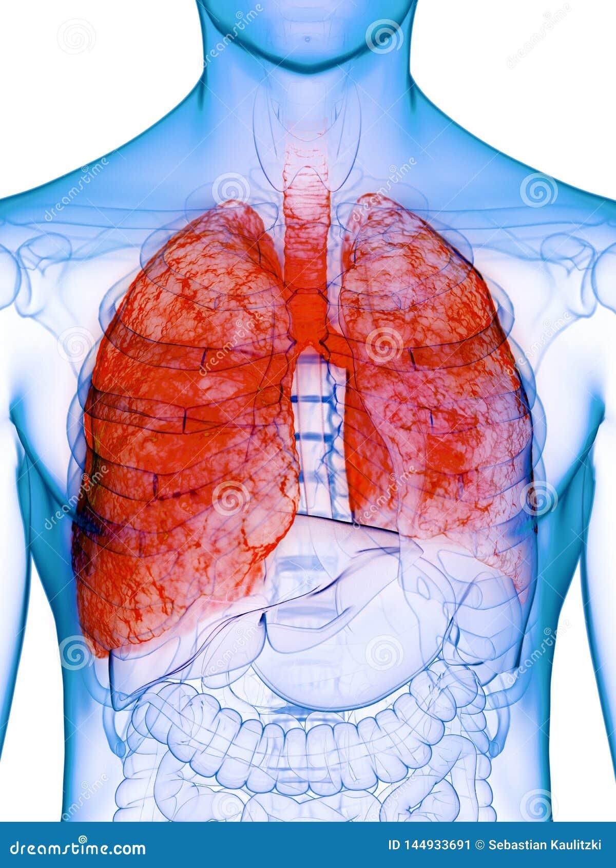 Un polmone malato