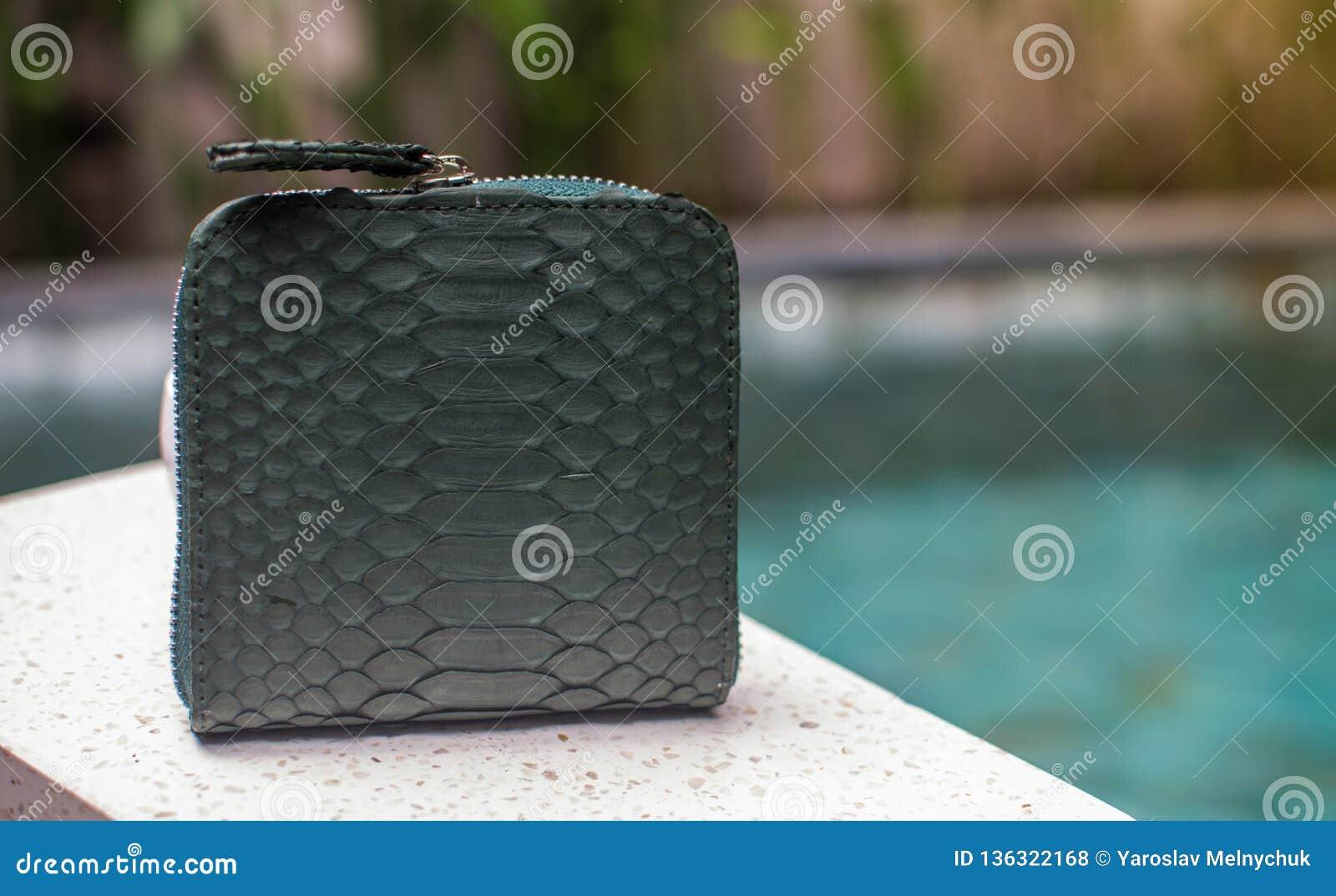 Un portafoglio dei soldi verdi, piccola borsa di cuoio verde elegante vicino al gruppo di fashionista Piccola borsa bollata del p
