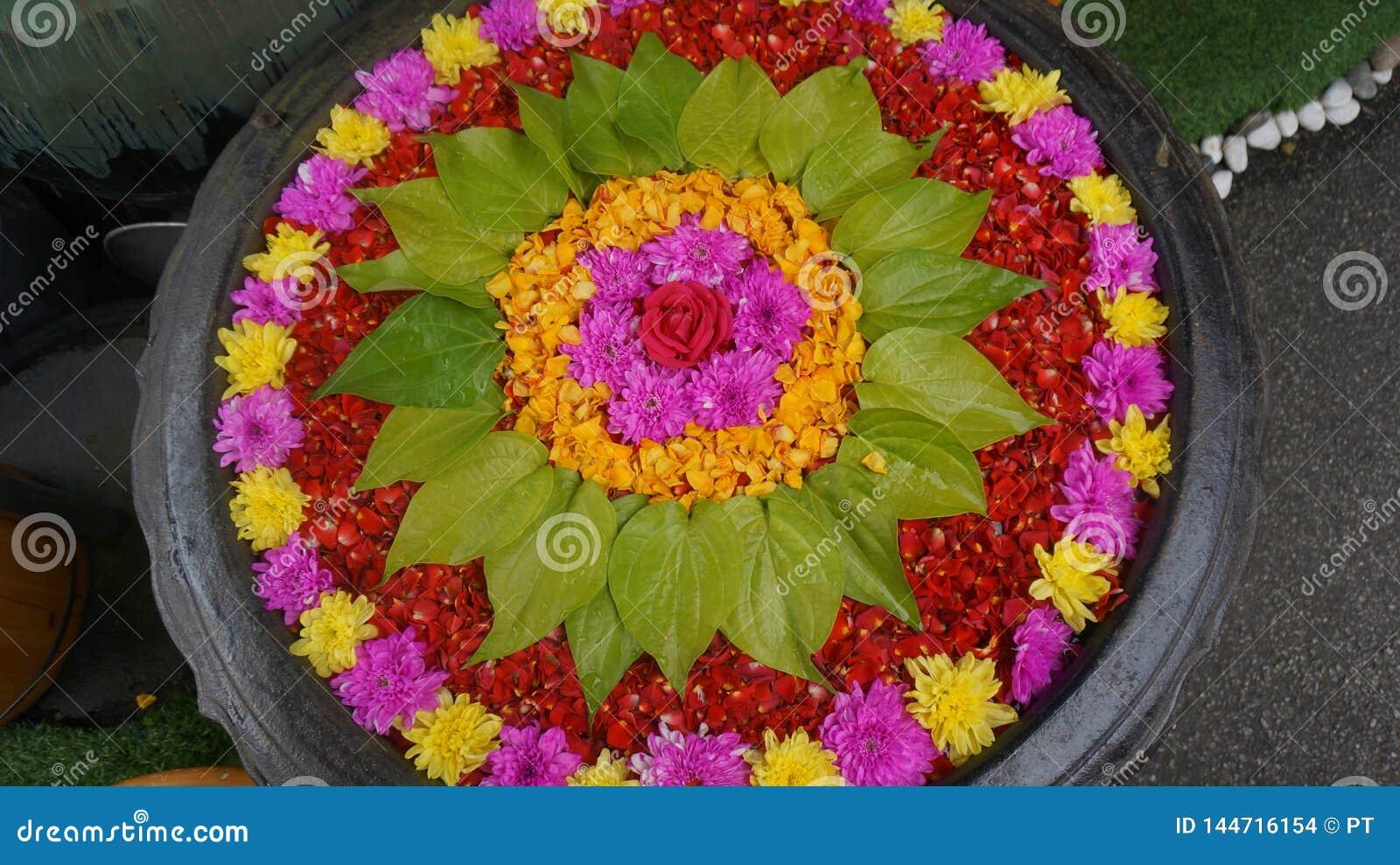 Un pote hermoso de las flores para la gente y dios más impresionantes
