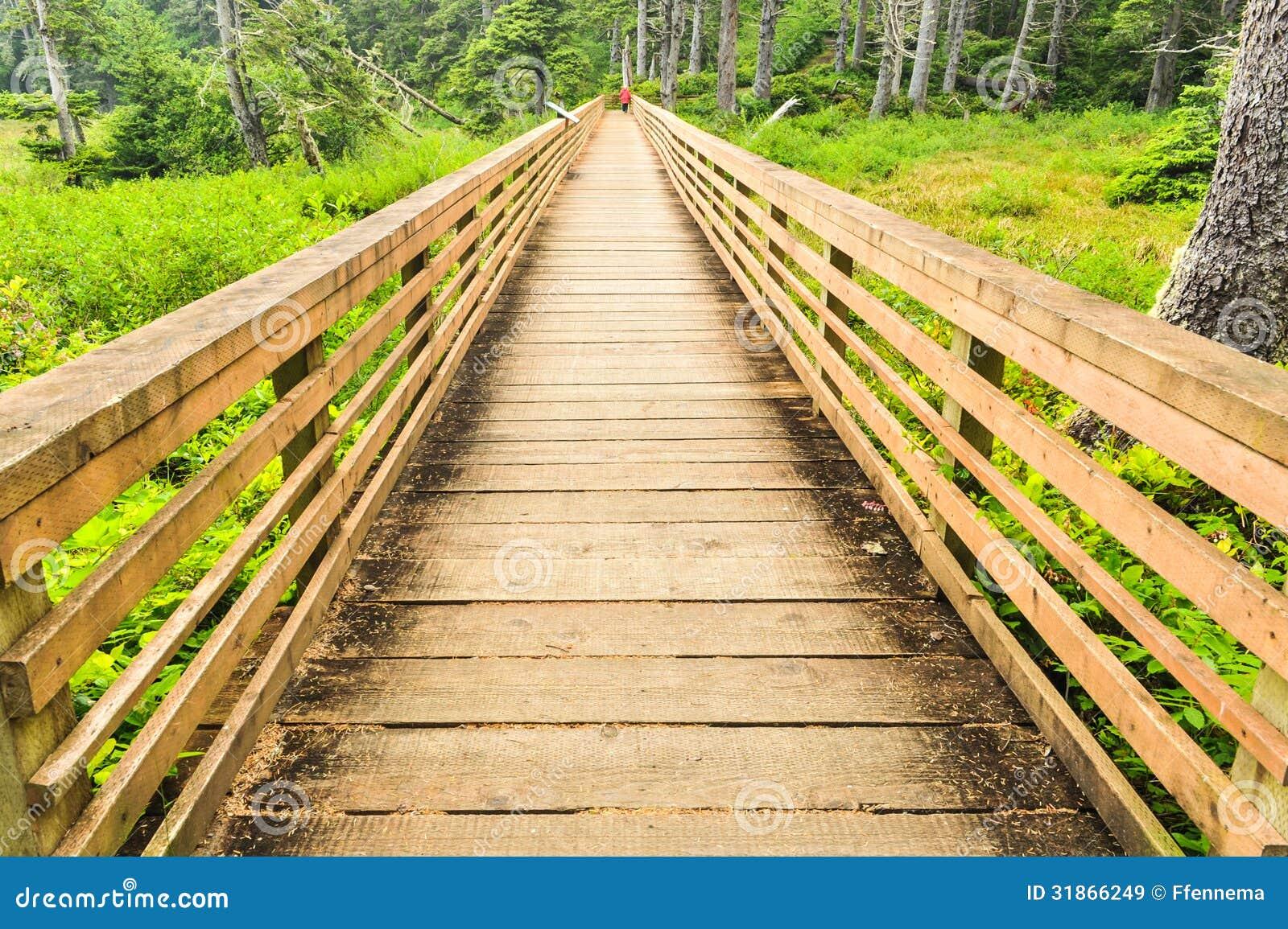 Un puente sobre área pantanosa en un bosque