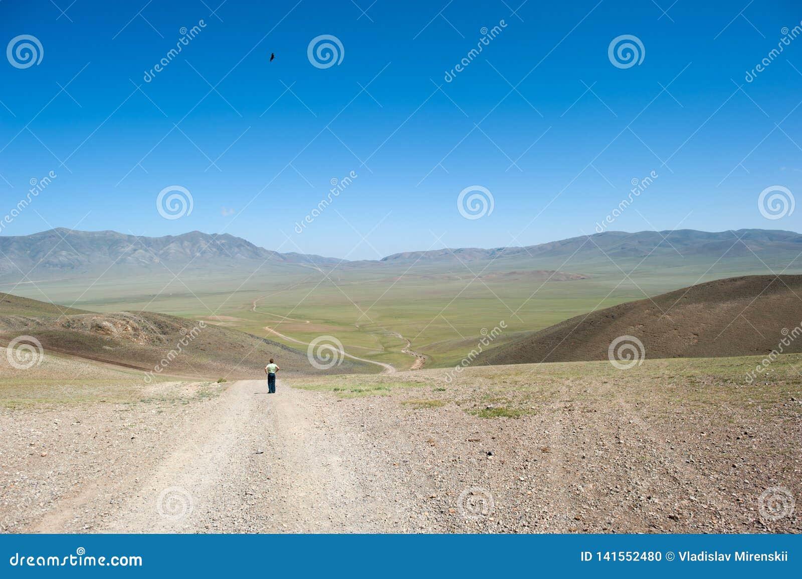 Un ragazzo esamina una strada della steppa attraverso una valle in Mongolia, un aquila vola sopra lui nel cielo