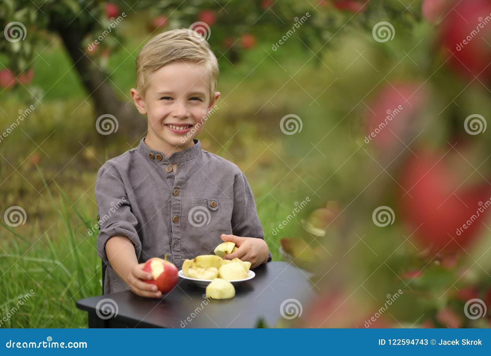 Un ragazzo sveglio e sorridente sta selezionando le mele in un meleto e sta tenendo una mela