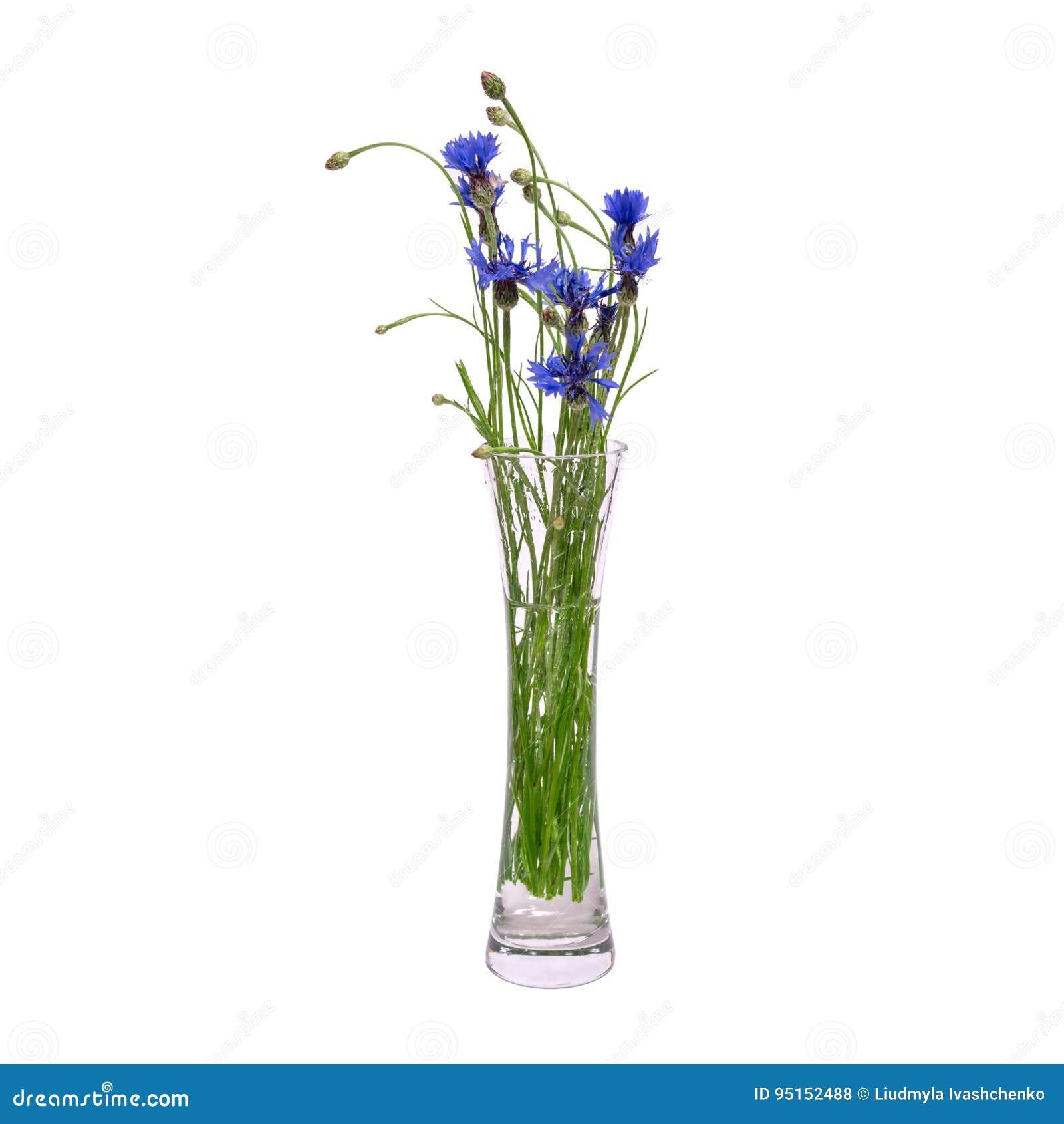 Un Ramo De Flores Azules De La Primavera En Un Florero Transparente