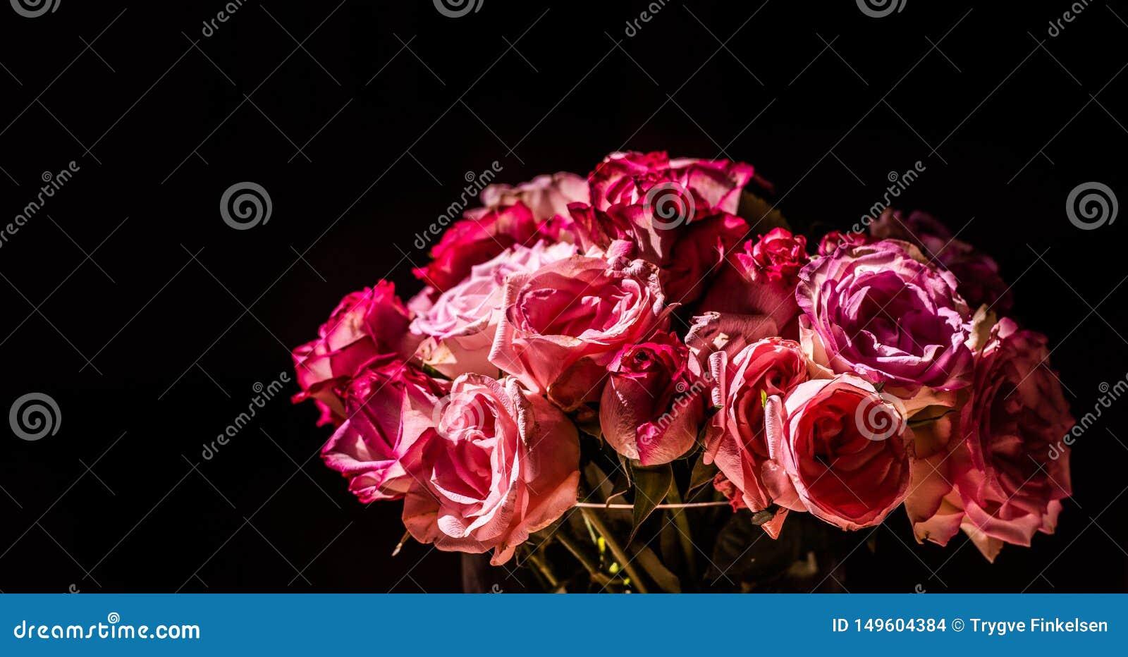 Un ramo de rosas rosadas en luz del sol