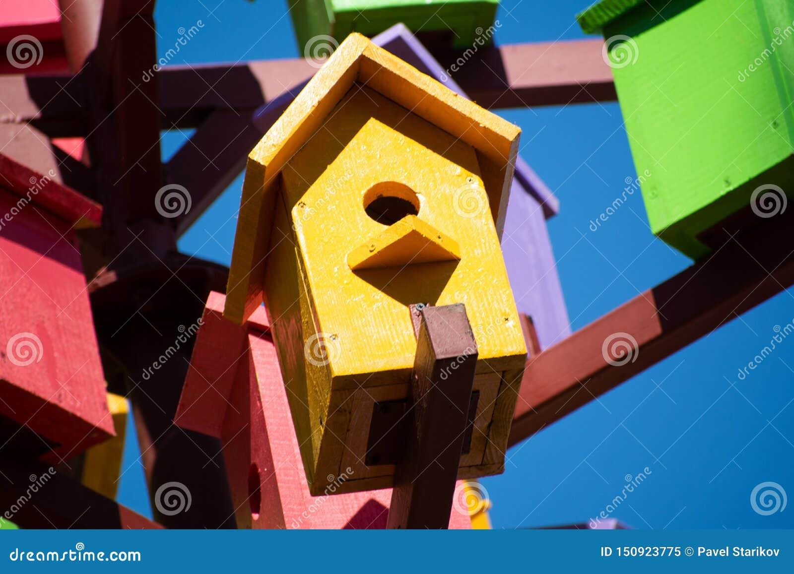 Un roitelet de maison minuscule fait une pause en dehors de sa maison