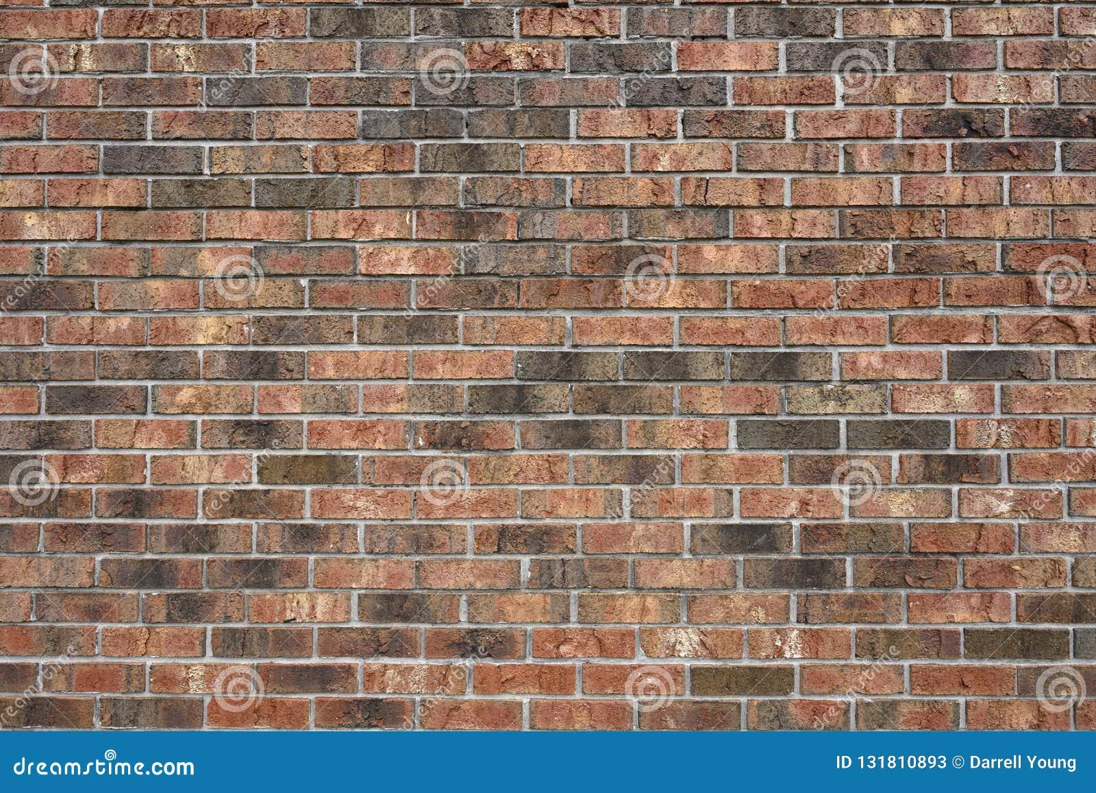 Un senza distorsione, muro di mattoni di varigated-colore