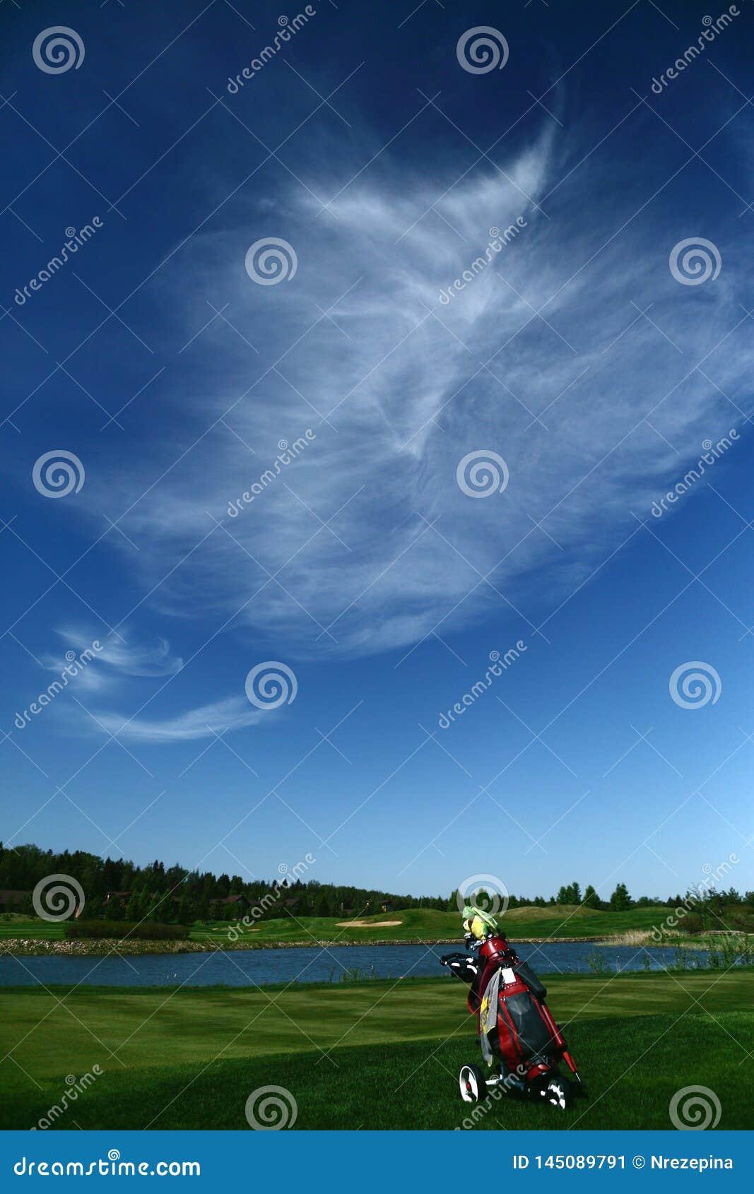 Un terrain de golf avec un golfbag