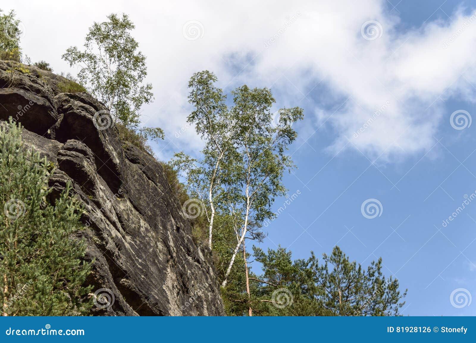 Un tiro anguloso de una formación de roca