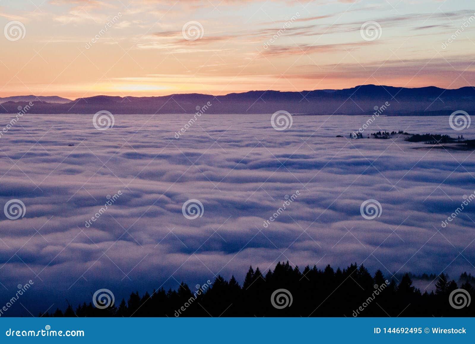 Un tiro hermoso de nubes desde arriba