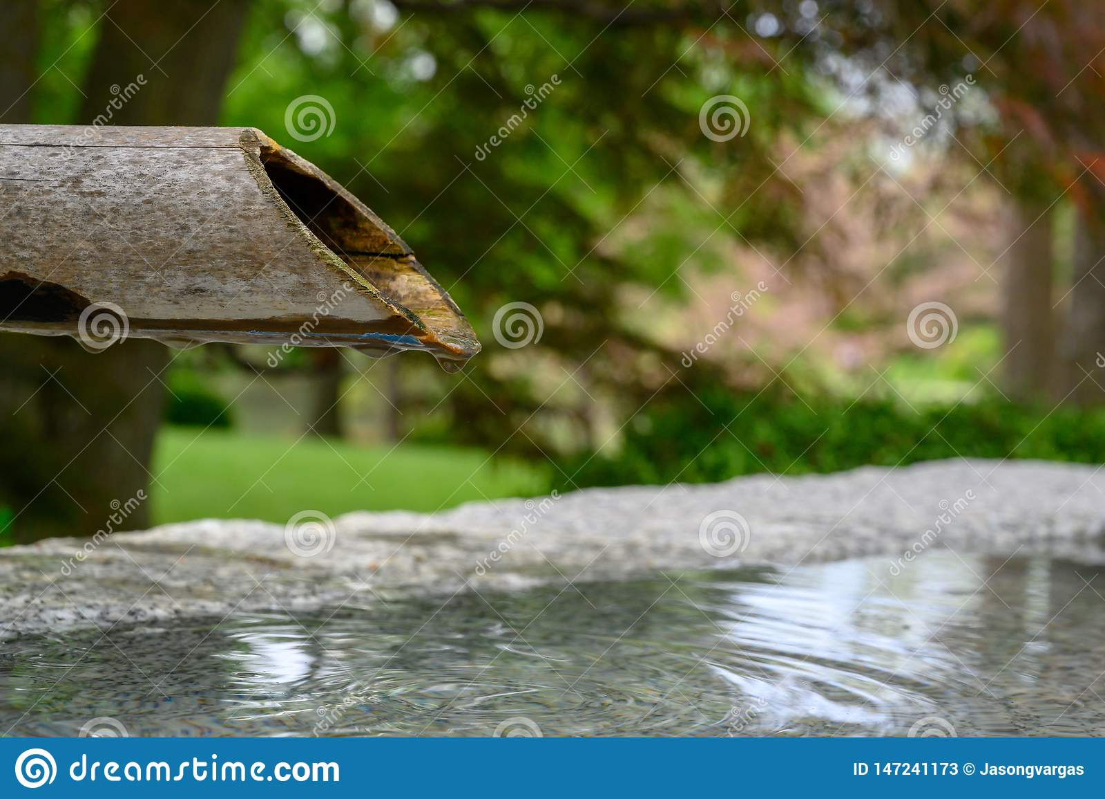 Un tubo de bamb? que gotea lentamente el agua