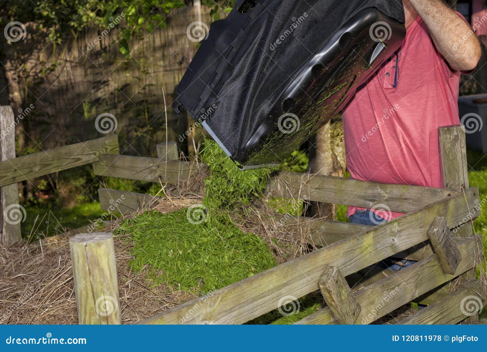Un uomo svuota il sacco di erba che ha tagliato con la falciatrice da giardino