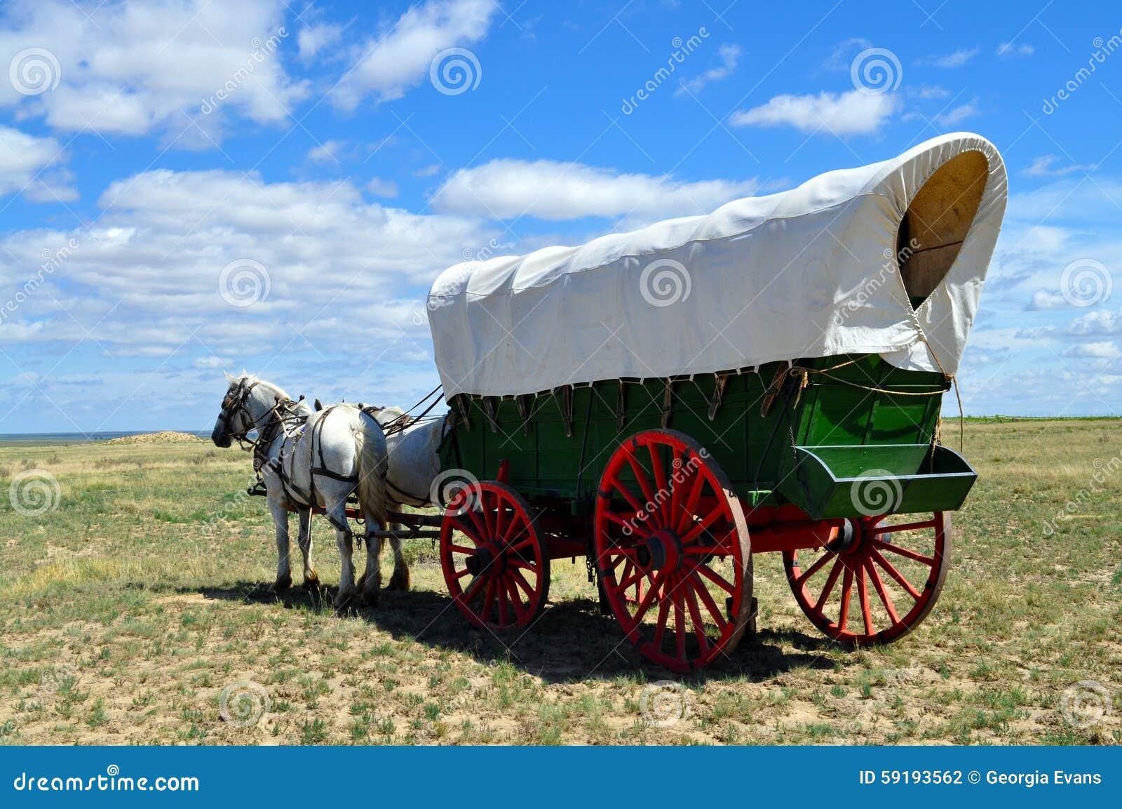 Un vagone di conestoga ha tirato dal gruppo dei cavalli